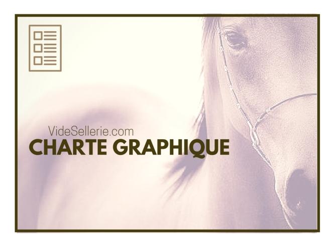 creation charte graphique site internet vente materiel equestre
